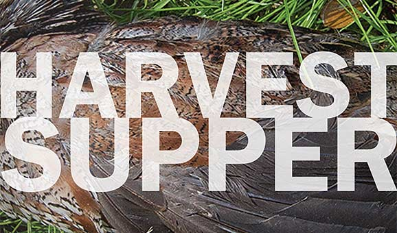 Harvest Supper on the Grounds of Rowan Oak