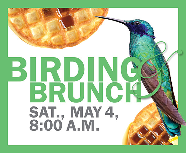 Birding & Brunch on Saturday, May 4, 2019, 8:00 a.m. Ad features photo of humming bird and waffles with syrup and butter..